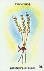 Aimees-10u-Vermehrung